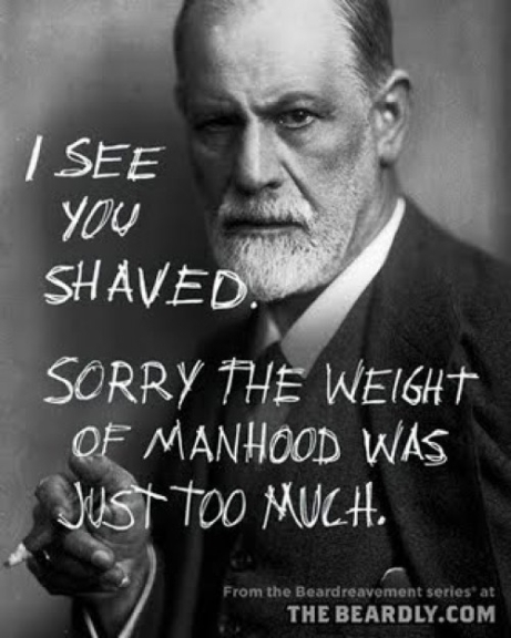 manly-beards-28-7e484f2b-sz500x625-animate